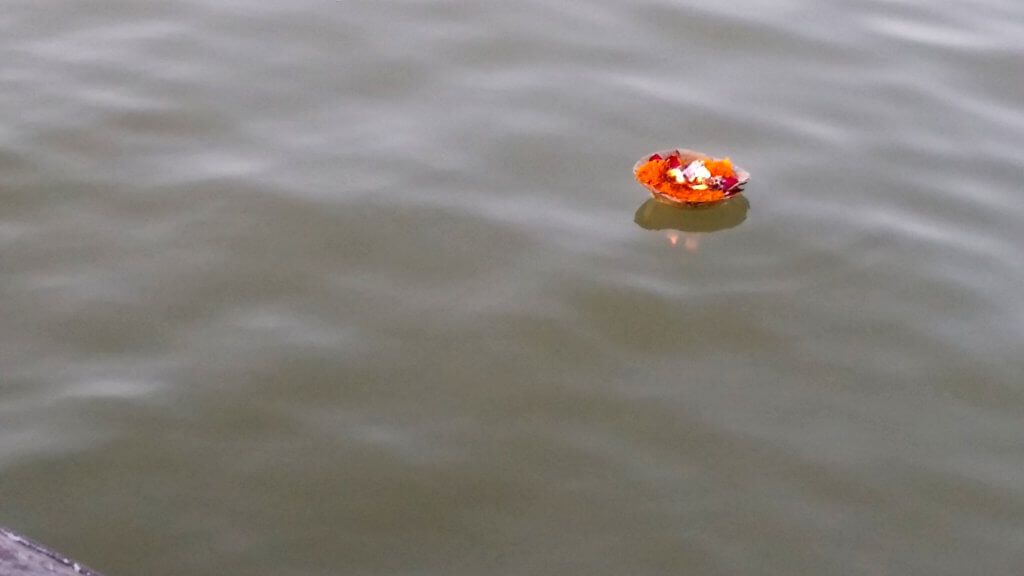 ガンガーの水面に浮かぶお供えの花